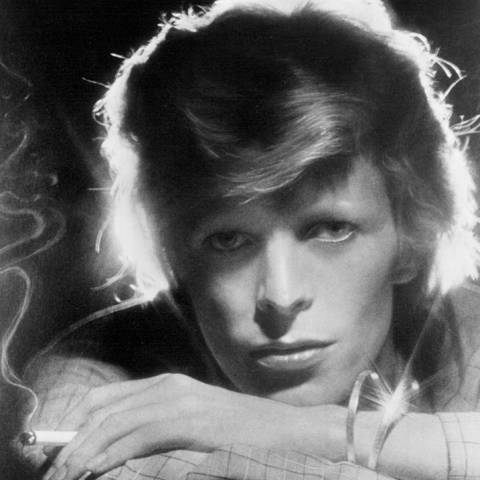 Belle comme Bowie
